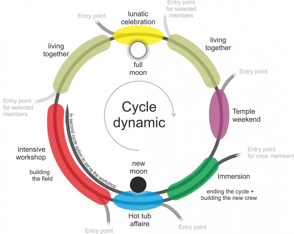 cycle grafic